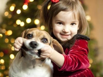 Crianças confundem o rosnar de um cachorro com sorriso 1