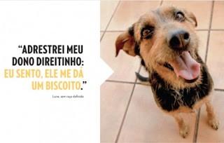 Livro traduz pensamentos bem-humorados de cães de estimação 3