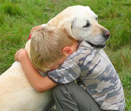 Como ajudar seu filho a lidar com a morte do cão 1