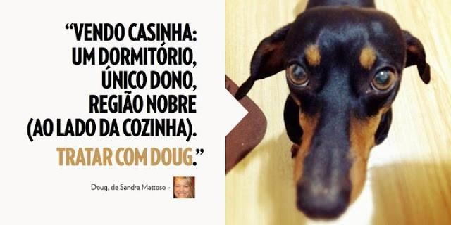 Livro traduz pensamentos bem-humorados de cães de estimação 1