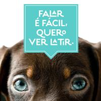 Livro traduz pensamentos bem-humorados de cães de estimação 2