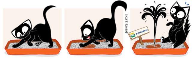 Gatos que urinam fora da caixa sanitária 4