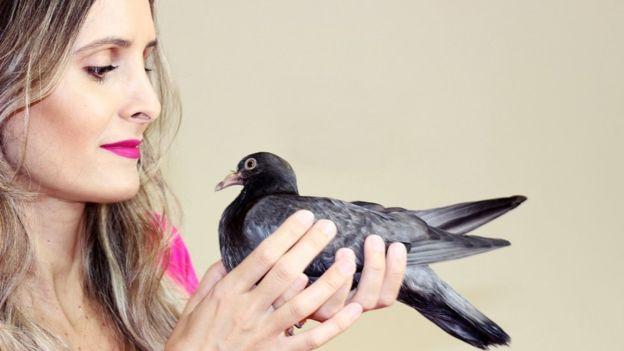 """Preconceito leva à """"guerra contra os pombos"""" 5"""
