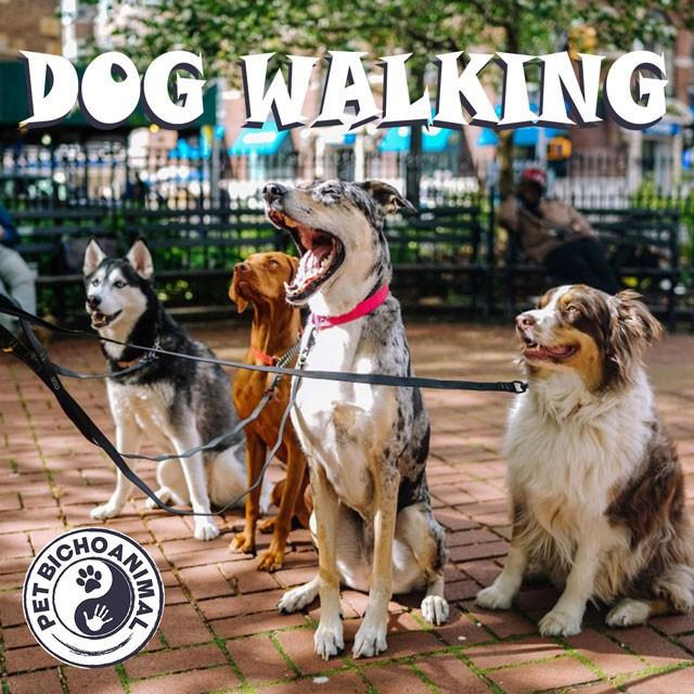 DOG WALKING - 90´S 1