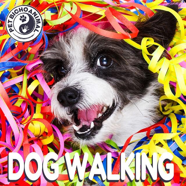 DOG WALKING - BRASIL HITS 1