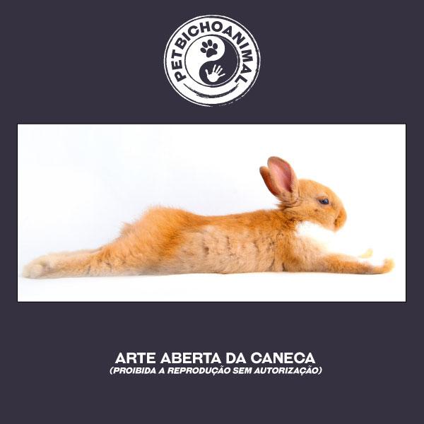 Caneca - Coelho Relaxado 2