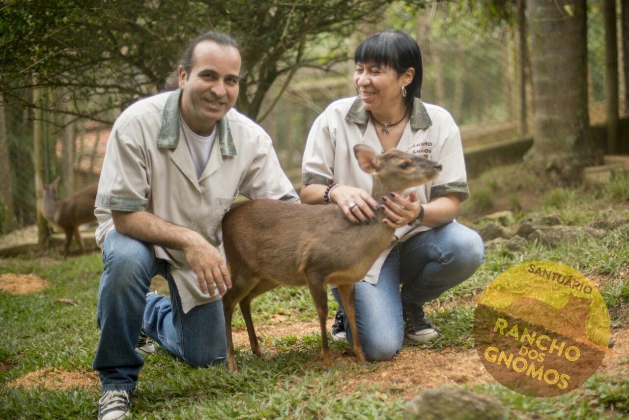 Conheça a Ong: Rancho dos Gnomos 2