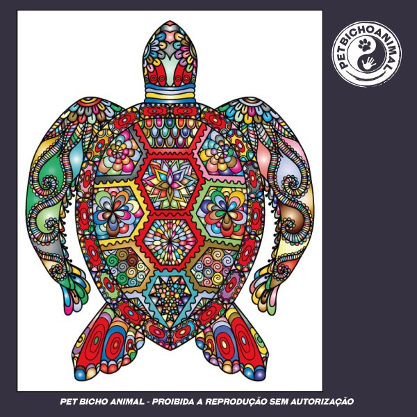 Camiseta - Tartaruga Colorida 2