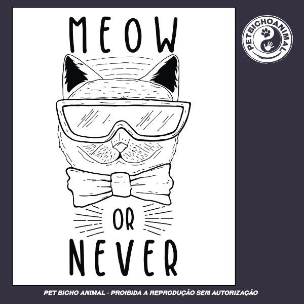 Camiseta - Meow Or Never 3