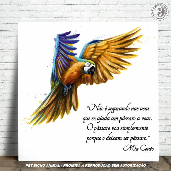 Azulejo Decorativo - Arara Azul 1