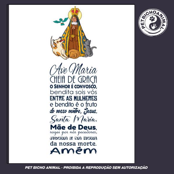 Camiseta - Nossa Senhora Aparecida – Padroeira do Brasil 3
