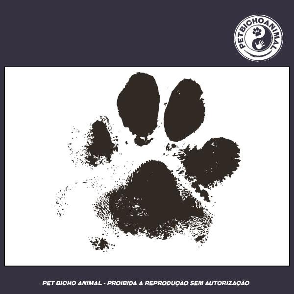 Camiseta - Marca de um Cão 2