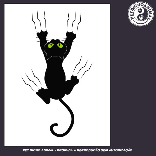 Camiseta - Gato Preto 3